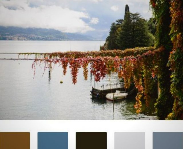 Foliage Lake Como
